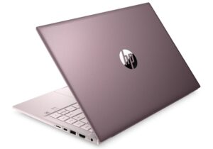 Roze Laptop Th